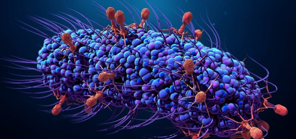Viruses attack and infect a bacterium. Credit: Design_Cells/Shutterstock.