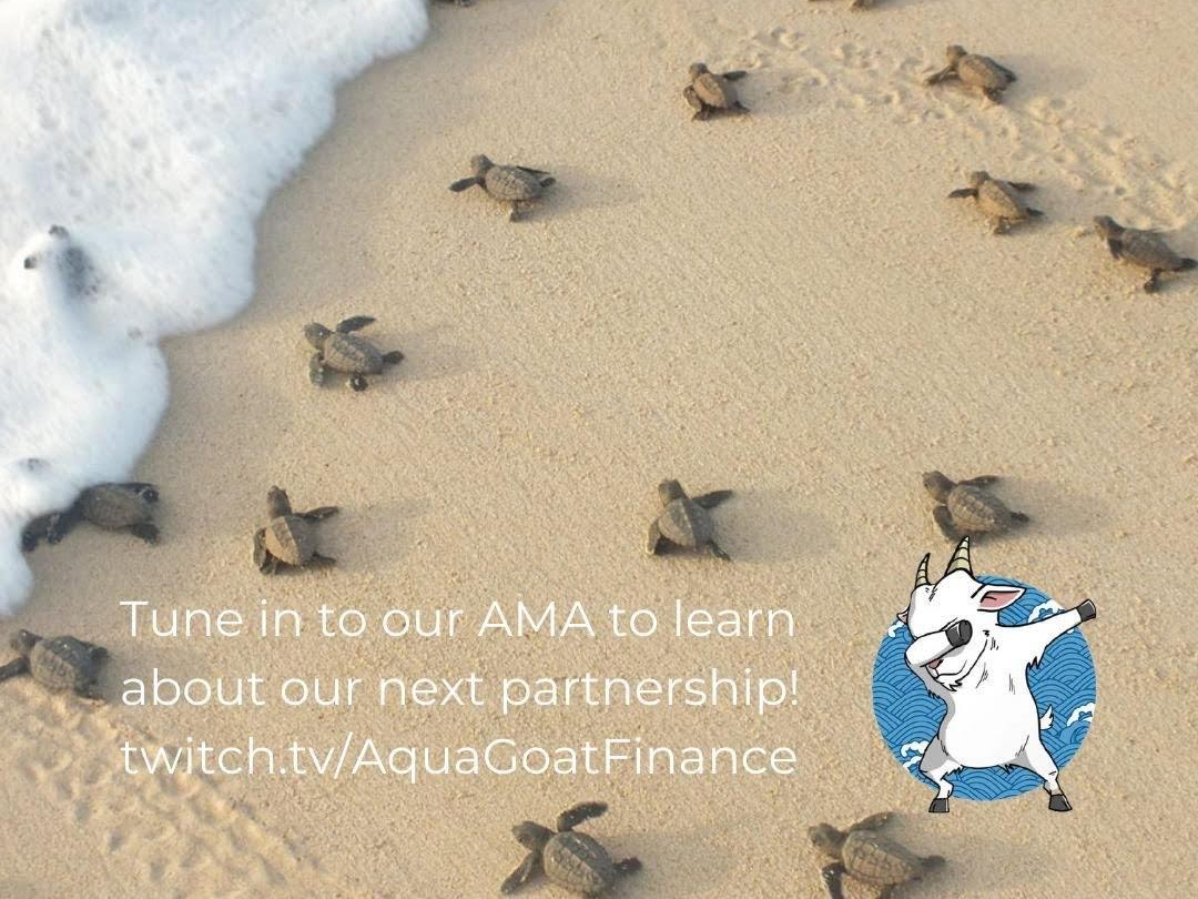 FOSTER secured sponsorship from US to fund for its turtle conservation works