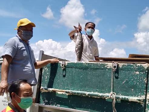 Proses mengagihkan ikan secara percuma kepada KIR sedang dilakukan di sembilan kampung di bawah Dun Kundasang.